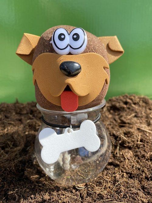 Grashoofd Hond