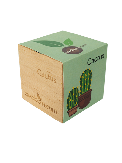 Zaadkubus Cactus