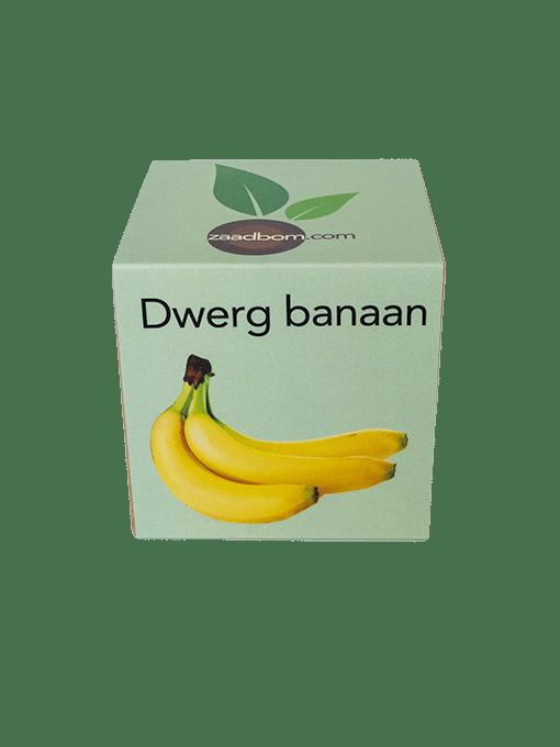Zaadkubus Dwergbanaan