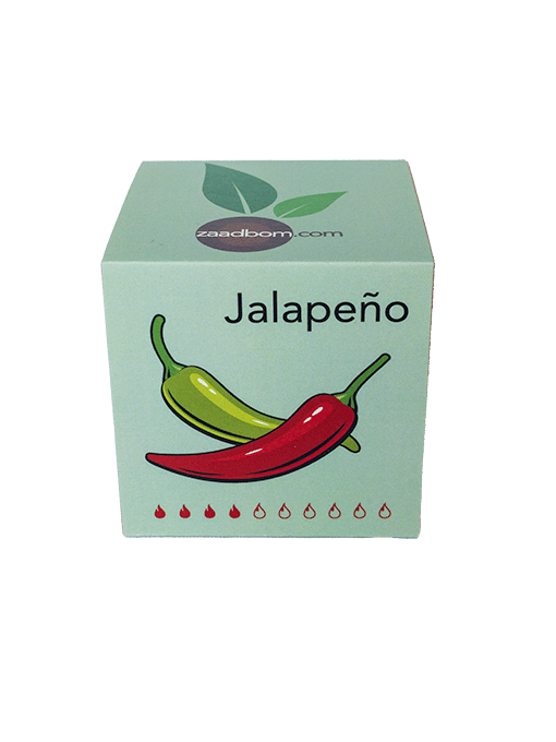 Zaadkubus Jalapeño