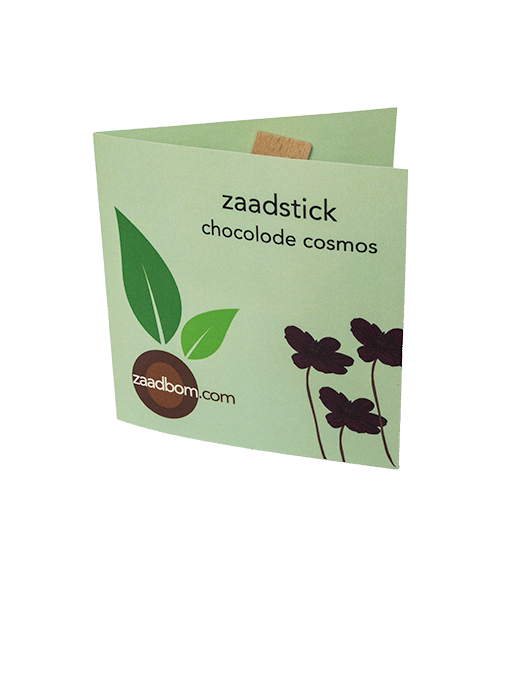 Zaadstick Chocolade Cosmos