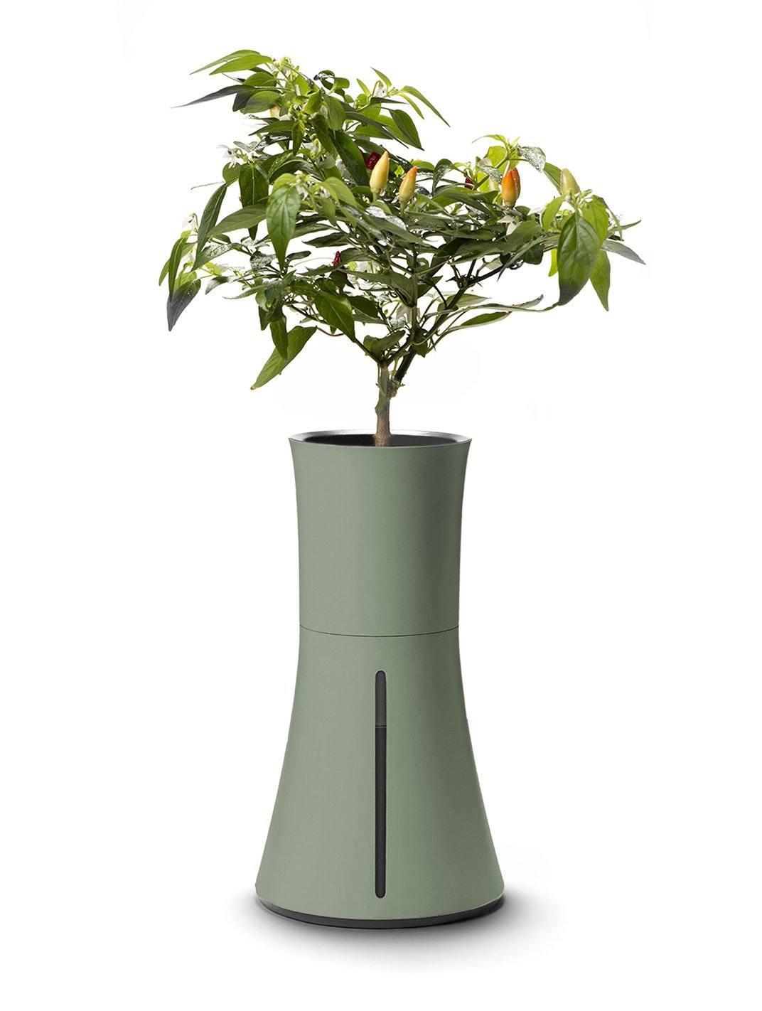 Botanium hydrocultuurpot